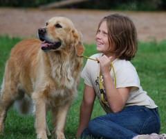 Downloads für Hundehalter